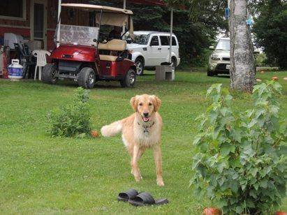 Nellie having a blast at Lake Nellie